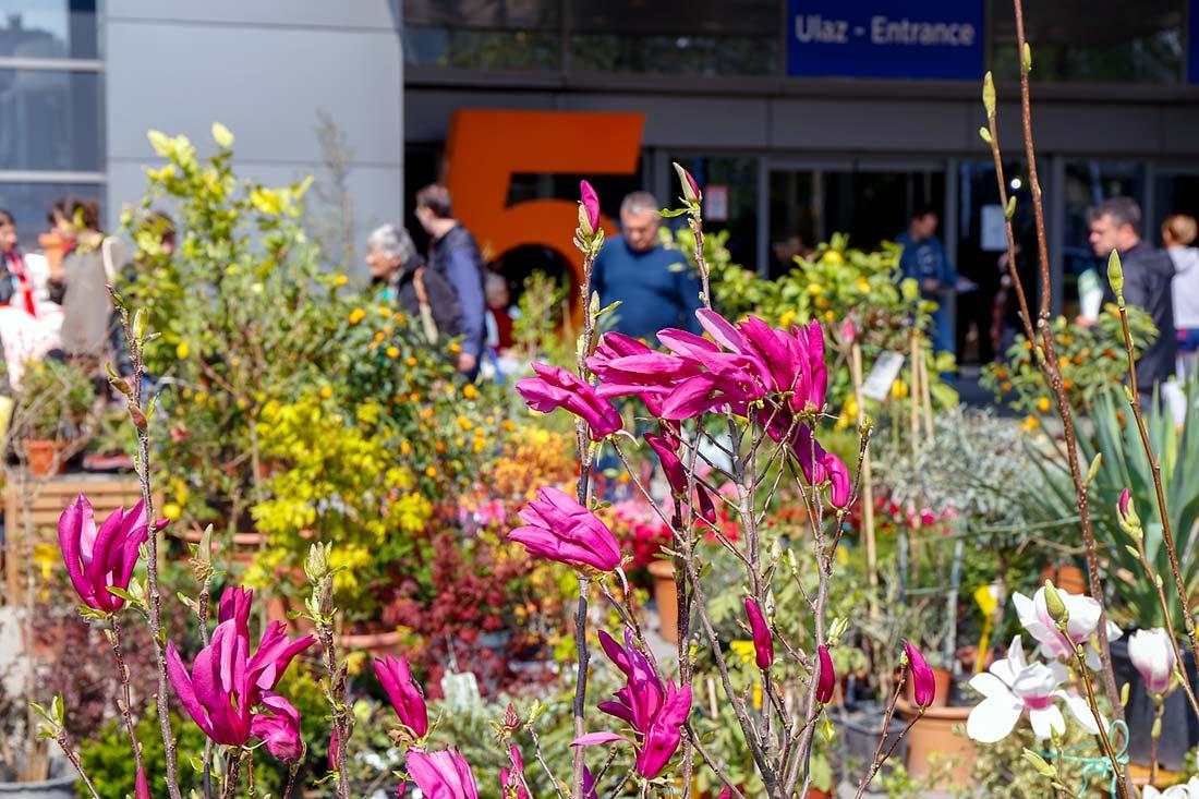 Sajam hortikulture do nedelje pred posetiocima