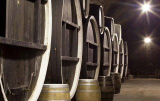 Iločki podrumi - simbol hrvatske vinske tradicije