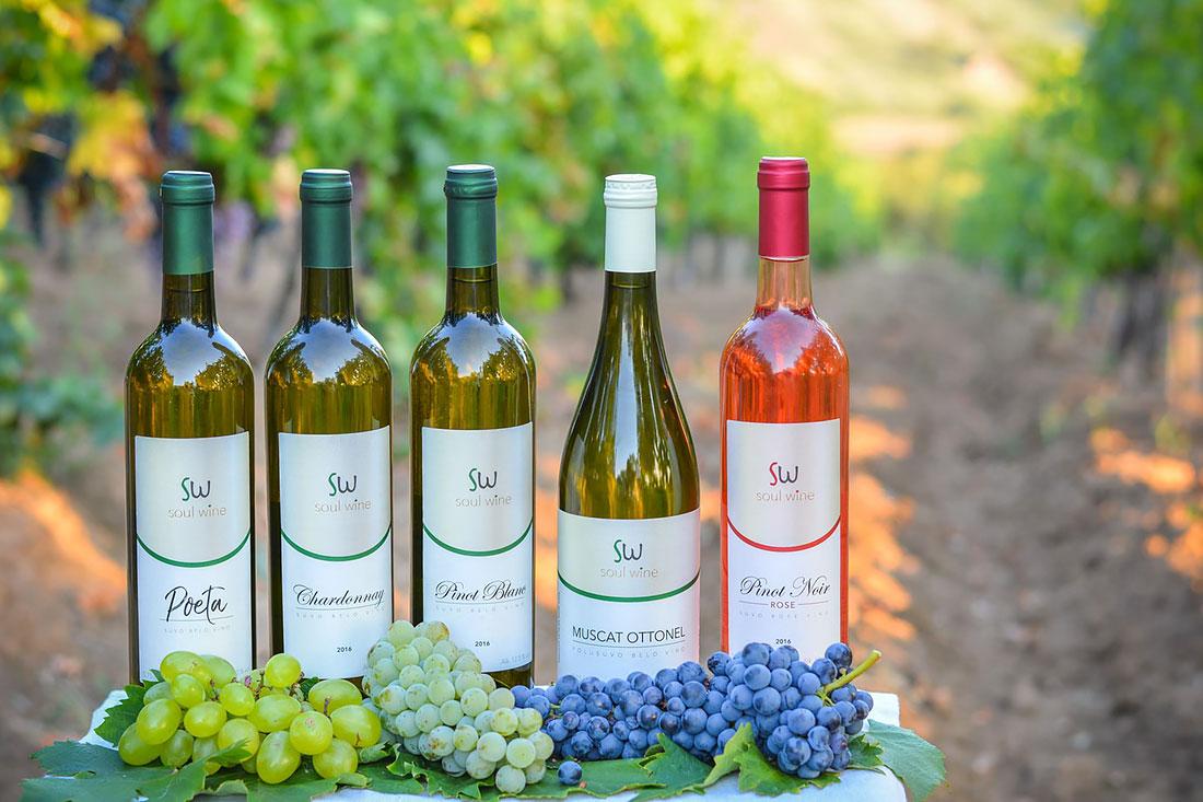 Bogat asortiman vinarije Soul Wine