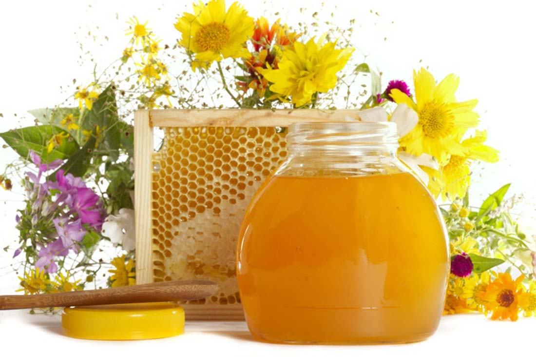 Друштво пчелара Матица, Пожега