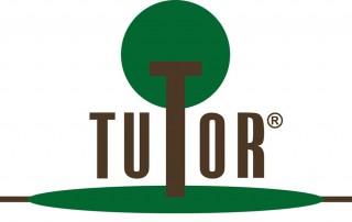 Tutor Company