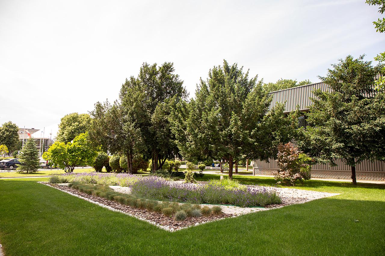 Београдски сајам добитник награде за најлепшу зелену површину испред пословних објеката